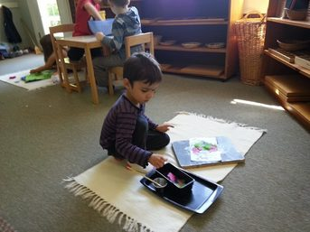School News From Pinewoods Montessori In Hillsborough Nc